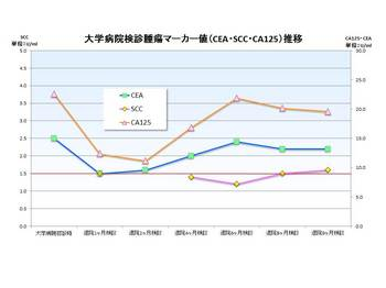 大学病院腫瘍マーカーCA125_CEA_SCCグラフ.jpg